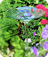 Glass Rainbow Bird Bath