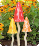 Tinkling Toadstools Bright Shades